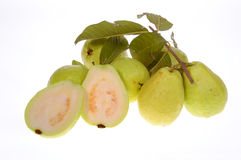 Guava fruit isolated Stock Photos