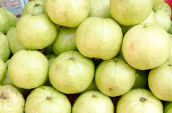 Guava fruit in market. A stack of green guava fruit in a market in Chiang Mai, Thailand Stock Image
