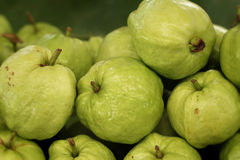 Guava fruit at the market Stock Photography