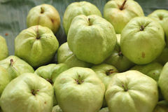 Guava fruit at the market Royalty Free Stock Photos