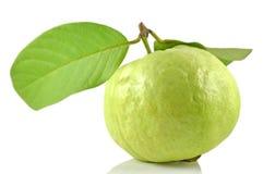 Guava fruit Stock Image