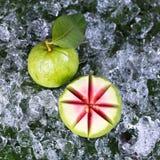 Guava. Stock Photos