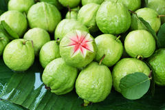 Guava. Stock Photography