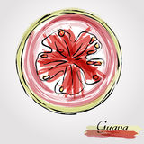 Guava fruit slice Stock Image