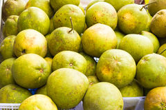 Guava fruit of South East Asia Stock Photos