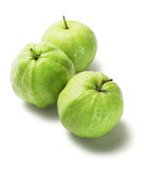 Guava Fruits Psidium guajava Stock Photography