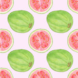 Guava or guayaba seamless watercolor pattern Stock Images
