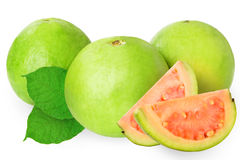 Guava isolated on white Stock Photos