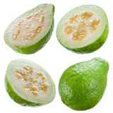 Guava isolated on white. Collection Stock Image