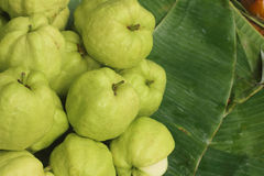 Guava laying on a green background at the market. Stock Photography