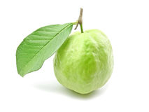 Guava with leaf royalty free stock image