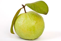Guava with leafs Royalty Free Stock Photography