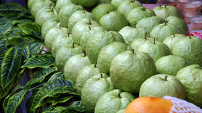 Guava. The many green guava are in the market place stock image