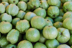 Guava. In the market,Thailand Stock Photography