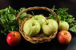 Guava och asiat i korgen på svart bakgrund Royaltyfria Bilder