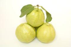 Guava odizolowywający na białym tle Fotografia Stock
