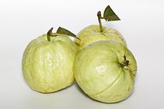 The guava Royalty Free Stock Photos