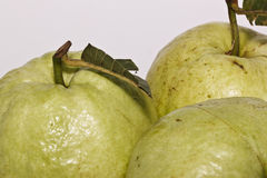 The guava Stock Photos