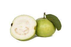Guava (Psidium guajava) Zdjęcie Royalty Free