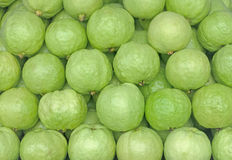 Guava Psidium guajava. Exotic tropical fruits on a market stal. Guava Psidium guajava. Exotic tropical green fruits on a market stall Royalty Free Stock Photos