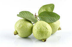 Guava (Psidium guajava Linn.) Royalty Free Stock Photo