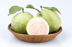 Guava (Psidium guajava Linn.). Royalty Free Stock Images