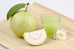 Guava (Psidium guajava Linn.) Stock Image