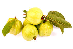 Guava som isoleras in på vit Royaltyfri Bild