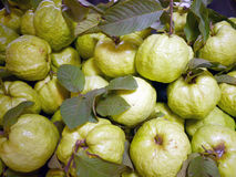 Guava in the street market Royalty Free Stock Photo