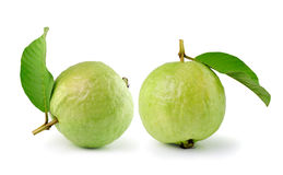 Guava (tropical fruit) on white background Royalty Free Stock Image