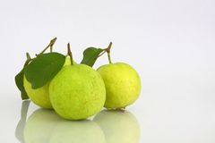 Guava on White background. Three green guava on White background Royalty Free Stock Photo