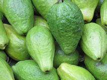 Guavafrukt Arkivbild