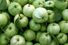 Guavafrukt som är ny för produkten för bakgrundsguavafruktsaft som bantar ren mat, guavagatafoods, organisk guavamatgräsplan arkivfoton