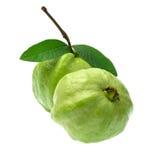 Guavafrukt som isoleras på vit bakgrund Arkivfoton