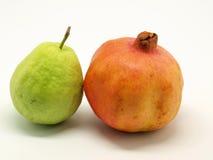 guavapomegranate Royaltyfri Bild
