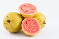 GuavaPsidiumguajava Arkivfoto