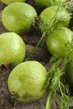 guavas зрелые Стоковые Фотографии RF