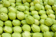Free Guavas Stock Images - 17360394