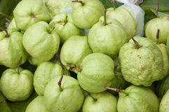 Guavas. Is Thai fruit at market Royalty Free Stock Photos