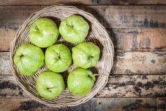 guavas Стоковая Фотография