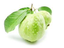Guavas with leaves Royalty Free Stock Photography