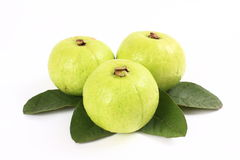Guavas Stock Images