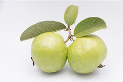 Guavas with leaves Royalty Free Stock Images