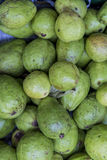 Guavas at the market Stock Photography