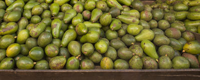 Guavas and Mangos for sale Stock Photography