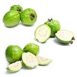 guavauppsättning royaltyfri foto