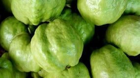 Guave lizenzfreie stockbilder