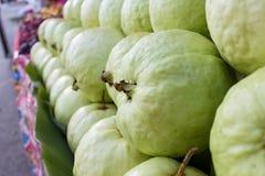 Guave Stockfotografie