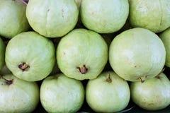 Guave Lizenzfreies Stockbild