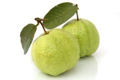 Guave Royalty-vrije Stock Foto